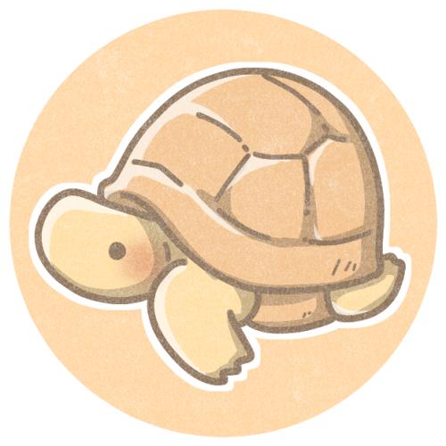 リクガメのイラスト