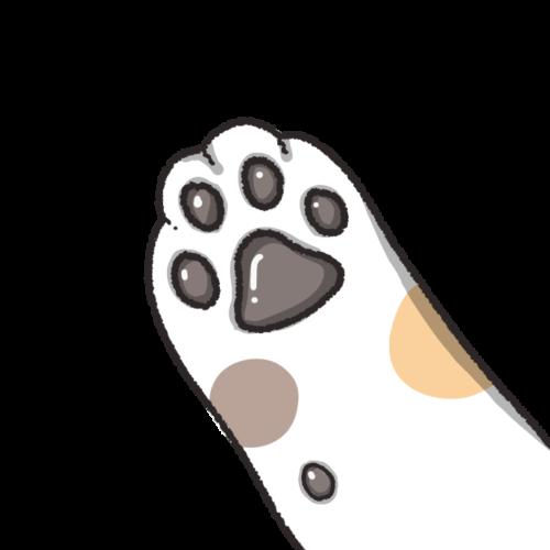 三毛猫の手(黒)