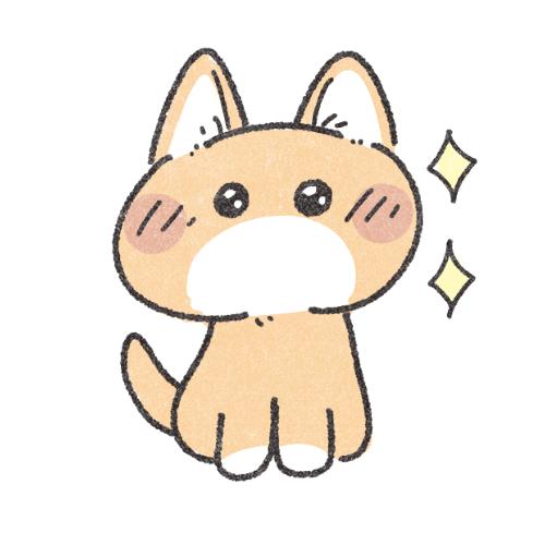 期待する猫