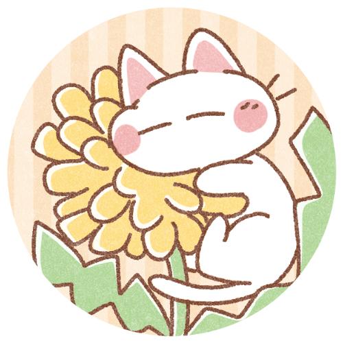 春たんぽぽと白猫さん