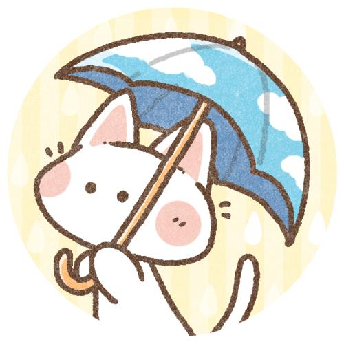 傘と猫さん